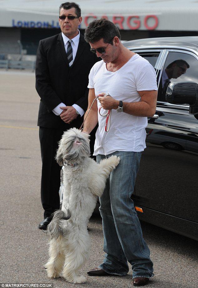 Simon Cowell s private Jet  Simon Cowell Private Jet