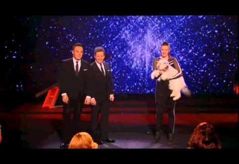 Ashleigh & Pudsey Win Britains Got Talent 2012!