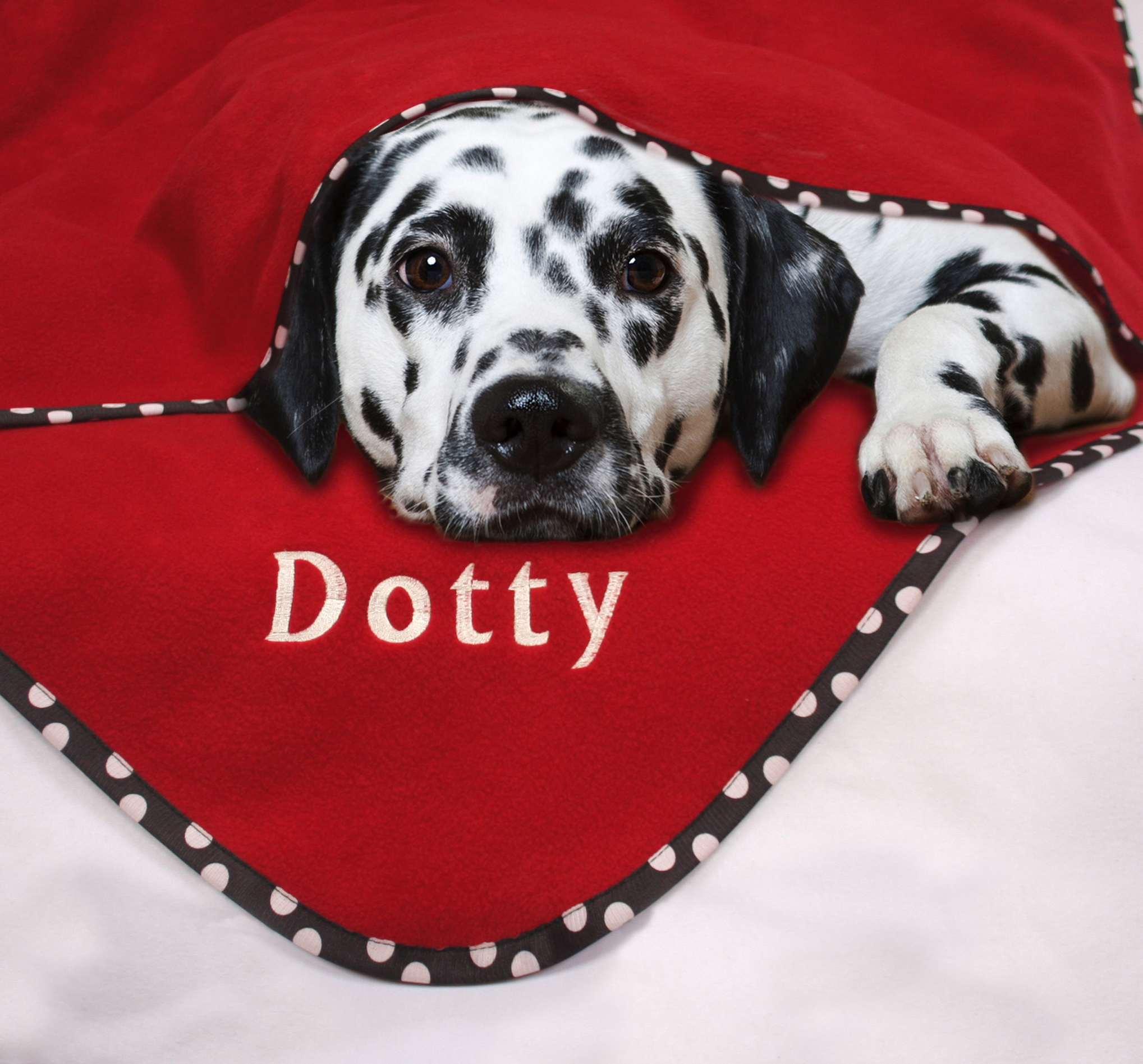 Personalised Pet Blanket Cherry Spot
