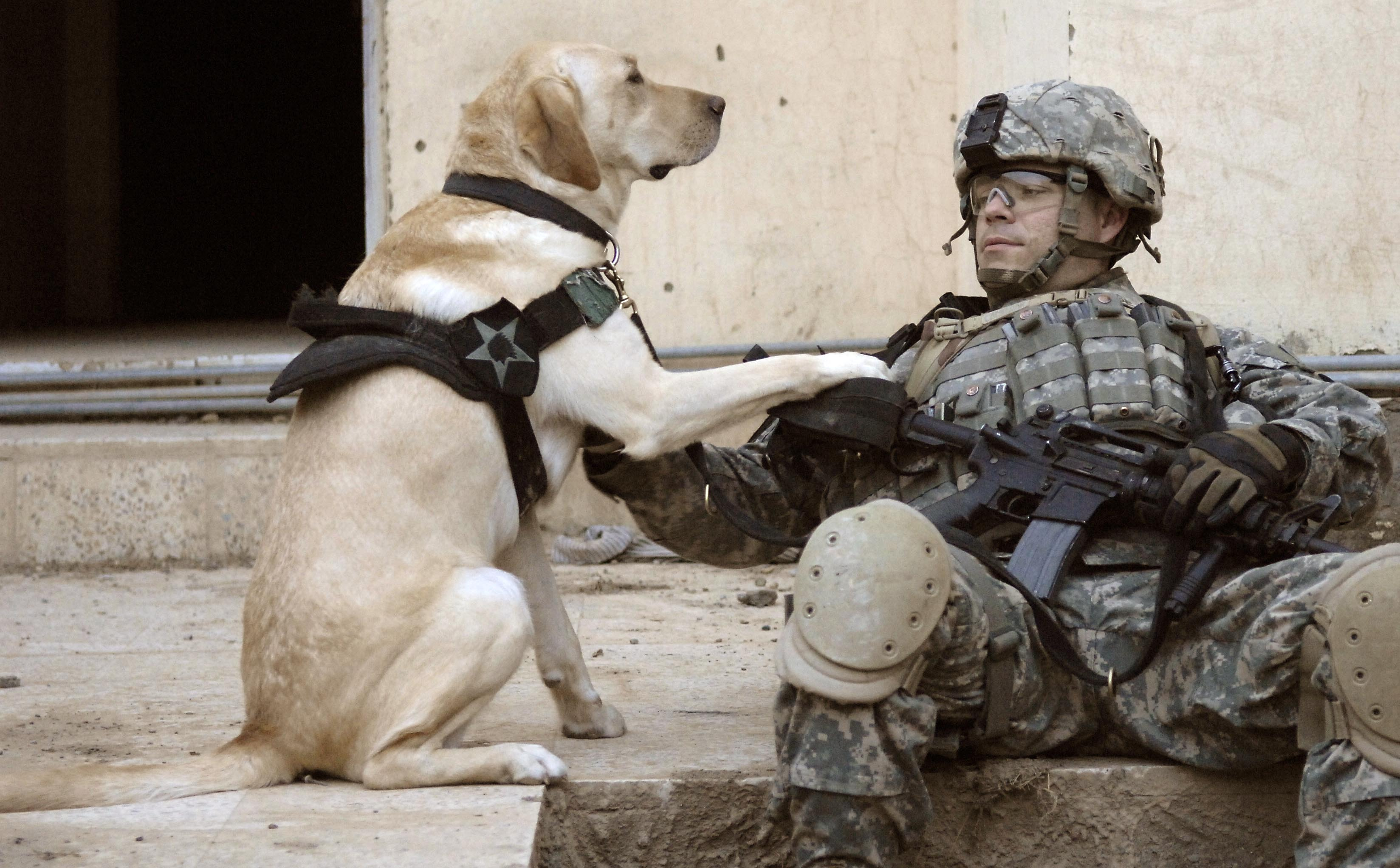 Iraq Soldier and his dog