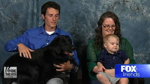 Dog helps discover babysitter abuse