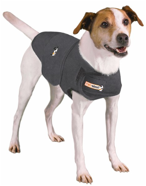 thundershirt dog coat anxiety