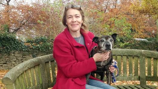 lost dog returns home for christmas
