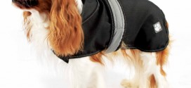 Best Waterproof Dog Coats 2014