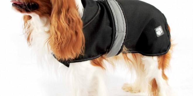 Best Waterproof Dog Coats 2014