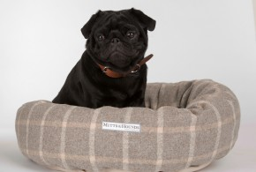 Top Dog Beds For Pugs