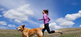 Teaching Your Dog To Run With You