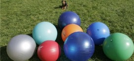 Treibball: The Newest Canine Sport