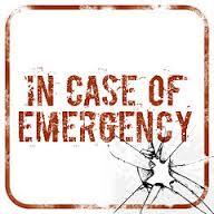 If I had an emergency dog kit…