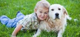 Dogs and Kids – the Do's and Don'ts