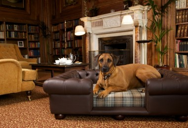 Scotts of London Balmoral Dog Bed Chesterfield Chocolate Leather with dove check cushion