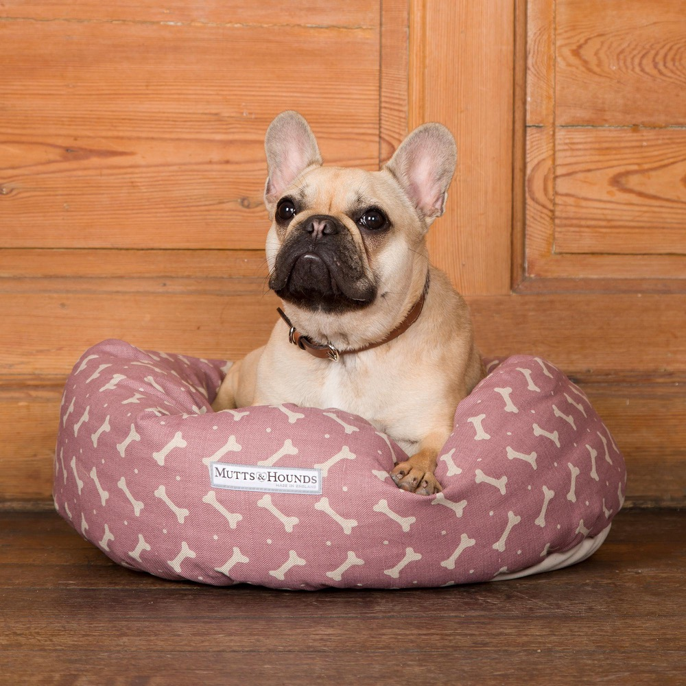 Best Dog Beds For French Bulldogs