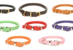 D&H Traditional Leather Dog Collars rolled