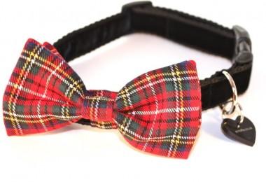 Hamish McHandsome Bow Tie Designer Dog Collar