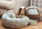 Mutts and Hounds Dog Beds 2016