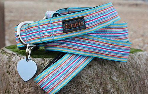 Sidmouth Stripe Designer Dog Collar and Lead Set