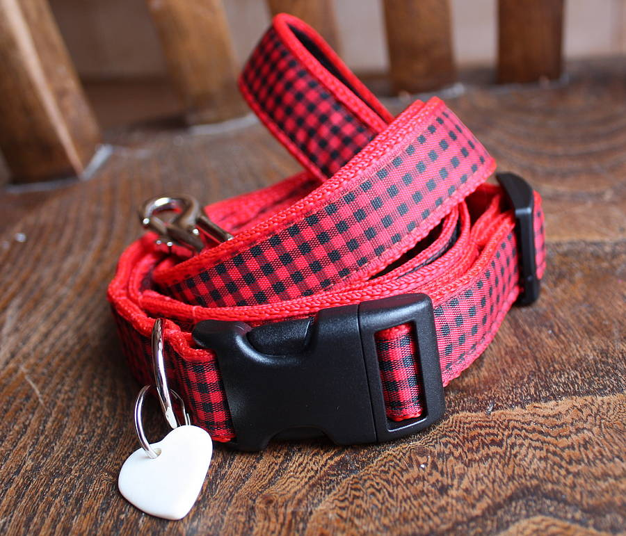 Dandy Designer Dog Collar and Lead Set