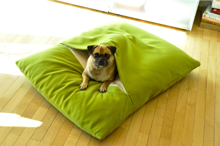 Diven Due Dog Orthopaedic Blanket Bed Pet Interiors Pea Green and Cream 1