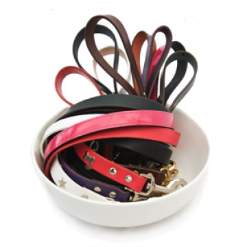 creature_clothes_leather_dog_leads_bowl