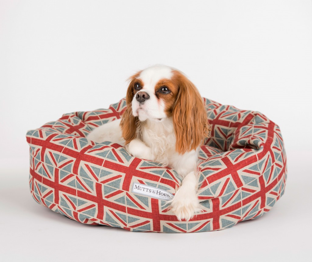 M&H Donut EB Union Jack Dog
