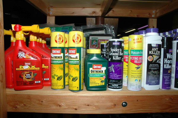 insecticides poisonous to dogs