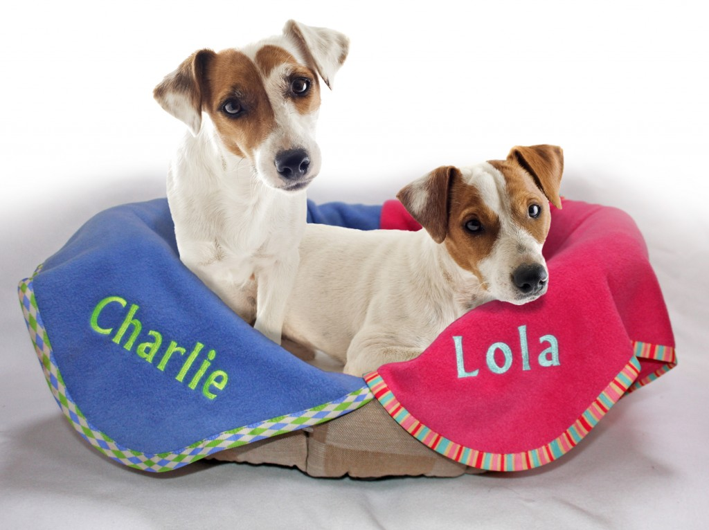 Personalised Pet Blankets - Chelsea Dogs