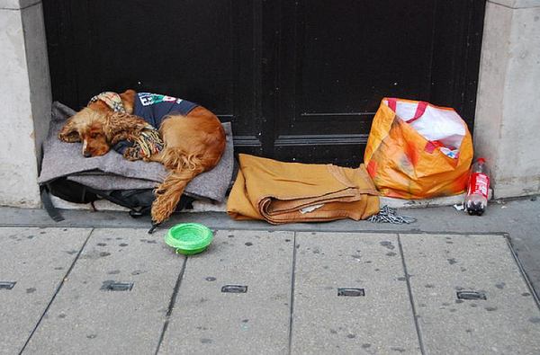 homeless7