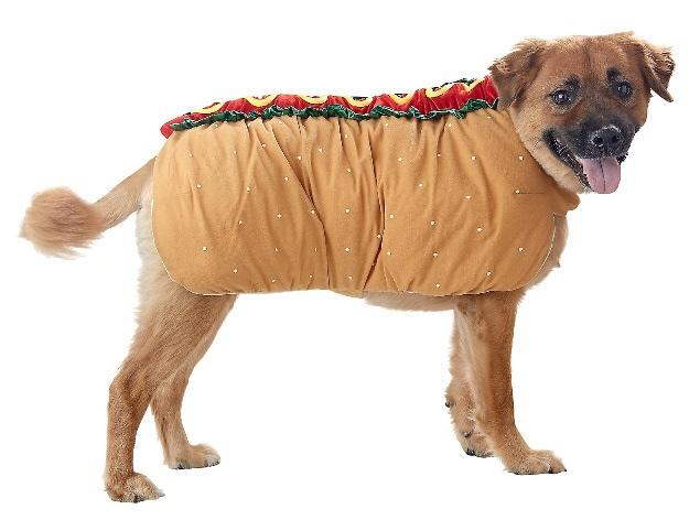 hotdog9