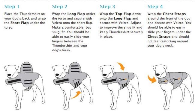 thundershirt dog coat instructions