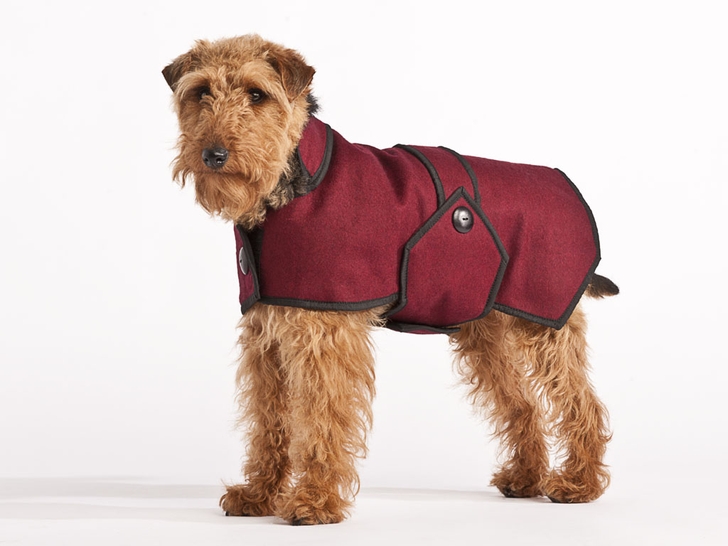 Luxury Woollen blazer style dog coat Maroon uk