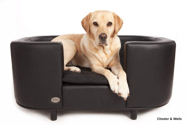 Best dog beds for labradors labrador dog beds - Sofas para gatos ...