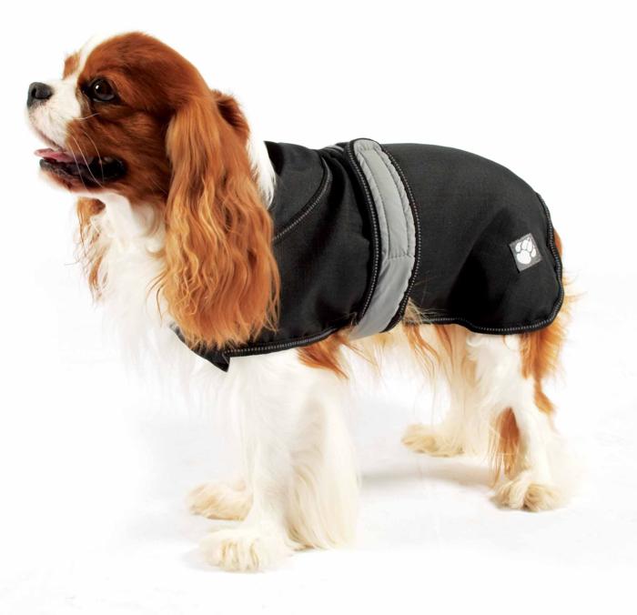 Chelsea Dogs Luxury Pet Shop Danish Design Ultimate 2 in 1 Waterproof Dog Coat Black with Dog