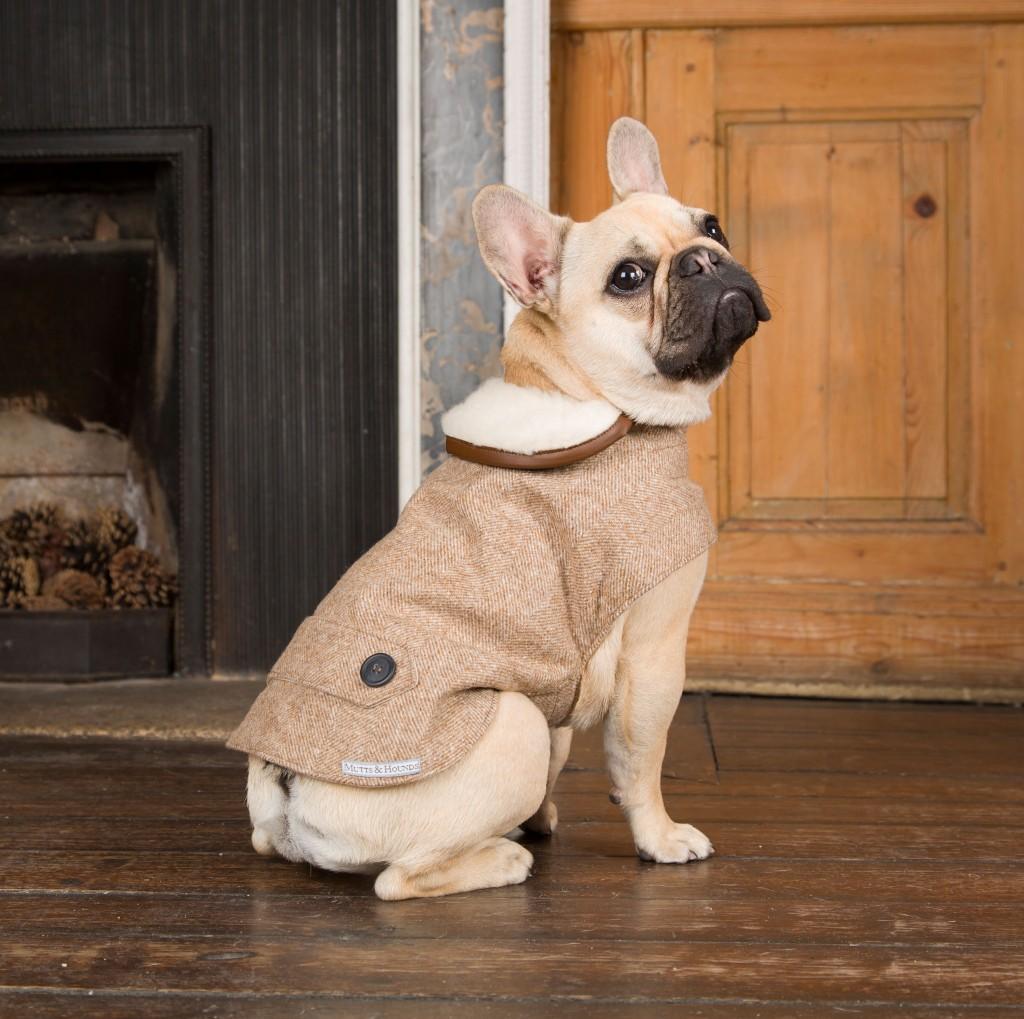 Camel Tweed Designer Dog Coat Mutts and Hounds UK