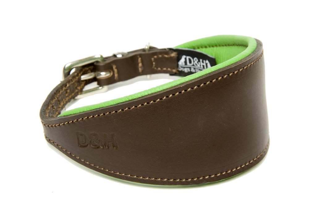 Dogs and Horses Luxury Leather Hound Collar Green