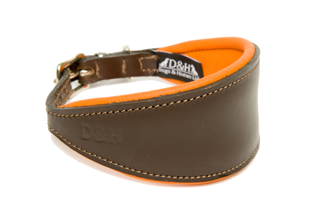 Dogs and Horses Luxury Leather Hound Collar Orange
