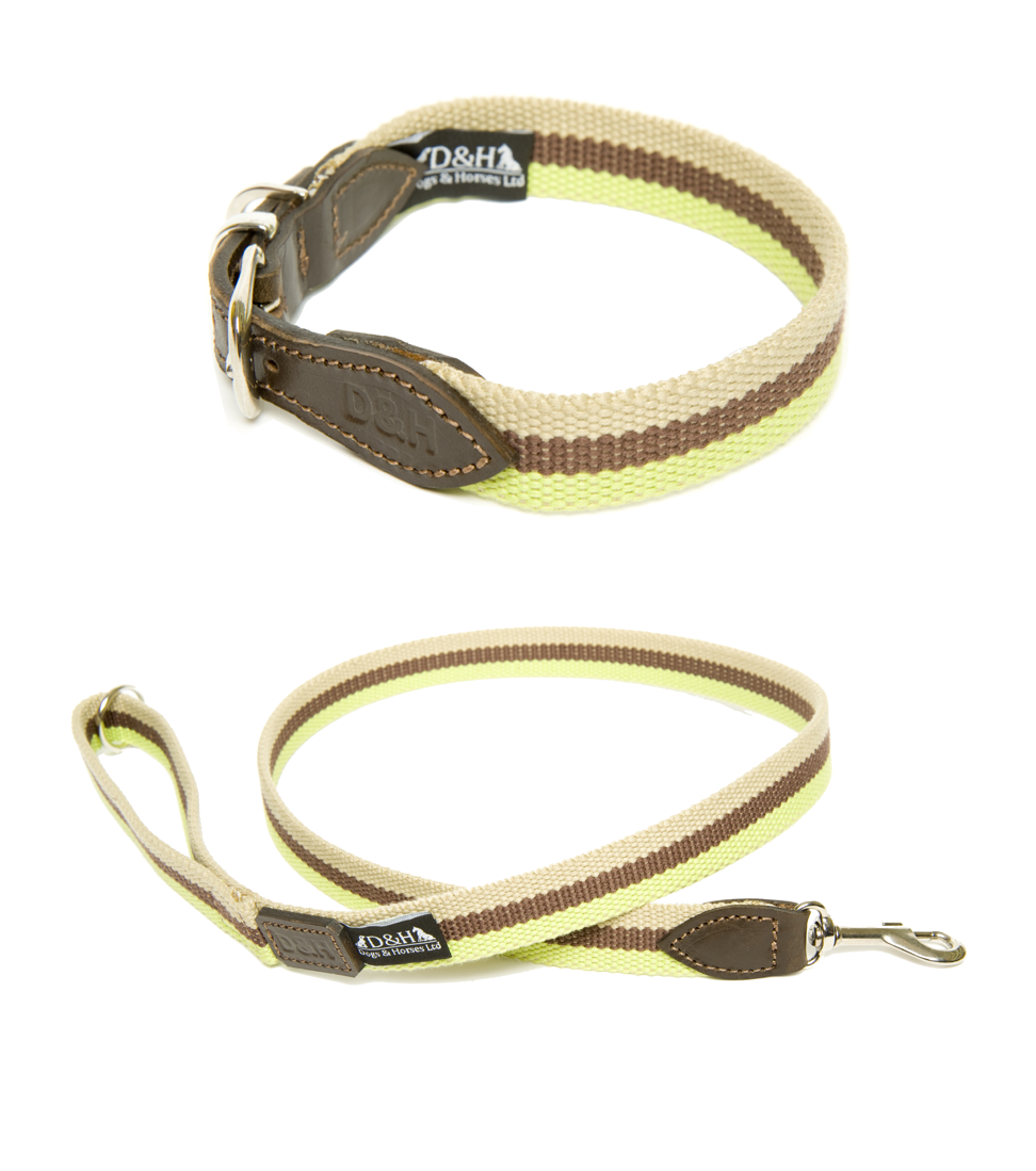 Dogs & Horses Wide Wbbing Dog Collar and Lead Set Green