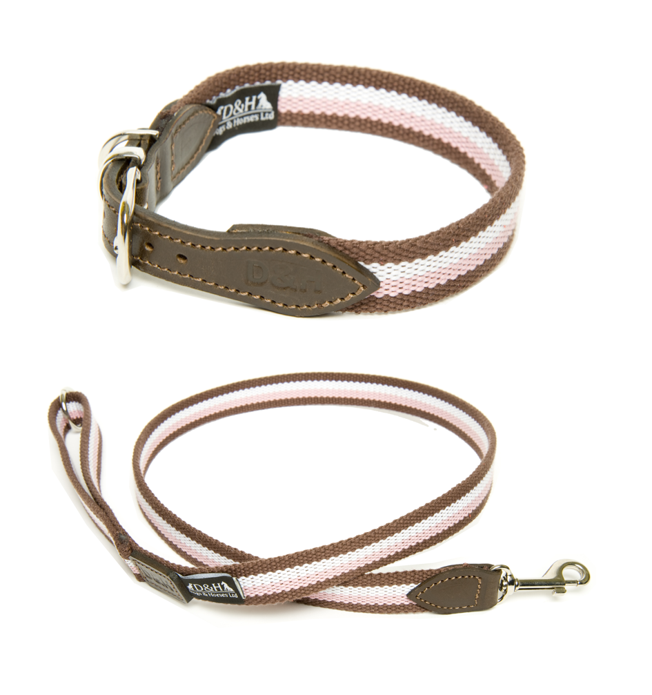 Dogs & Horses Wide Webbing Dog Collar and Lead Set Neopolitan