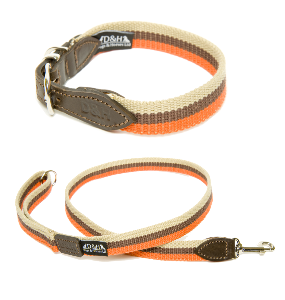 Dogs & Horses Wide Webbing Dog Collar and Lead Set Orange