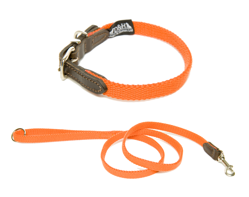 Dogs and Horses Narrow Cotton Webbing Collar And Lead Set Orange