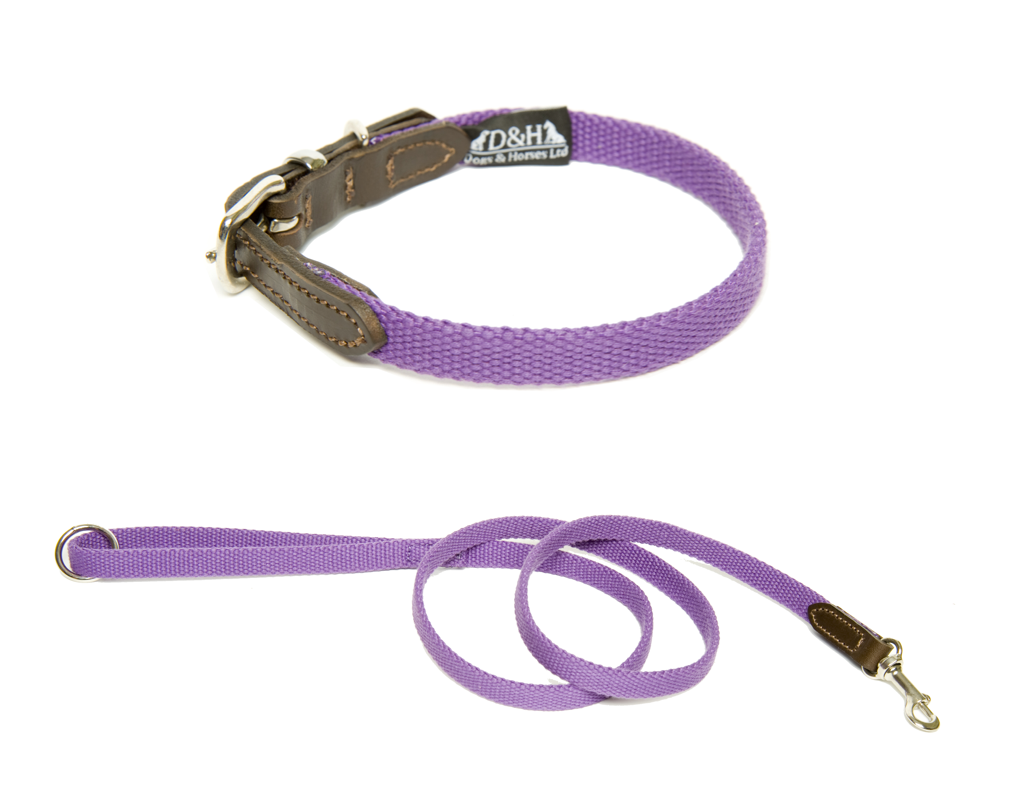 Dogs and Horses Narrow Cotton Webbing Collar And Lead Set Purple