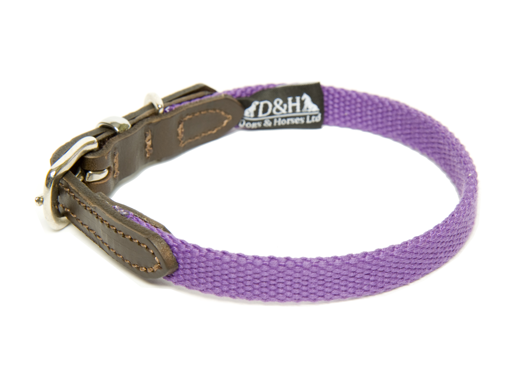 Dogs and Horses Plain Cotton Narrow Webbing Dog Collars For Chihuahuas
