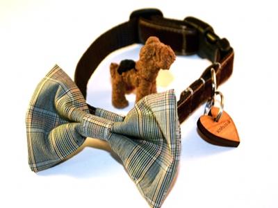 Astaire Mini Bow Tie Designer Puppy Collar
