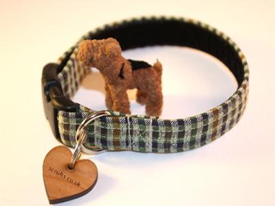 Savoy Tweed Puppy Collar