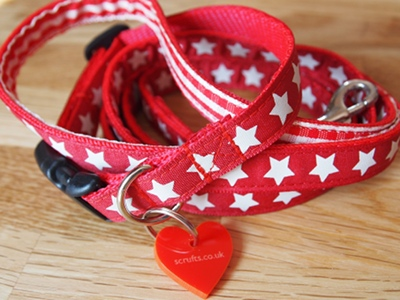 Starry Designer Puppy Collar and Lead Sets