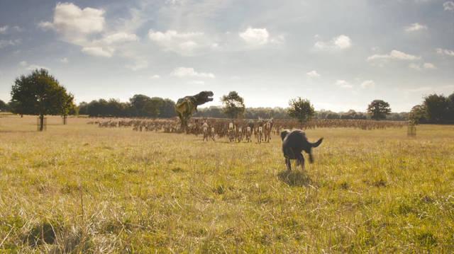 1681945-inline-inline-1-viral-dog-fenton-returns-to-wreak-havoc-on-deer