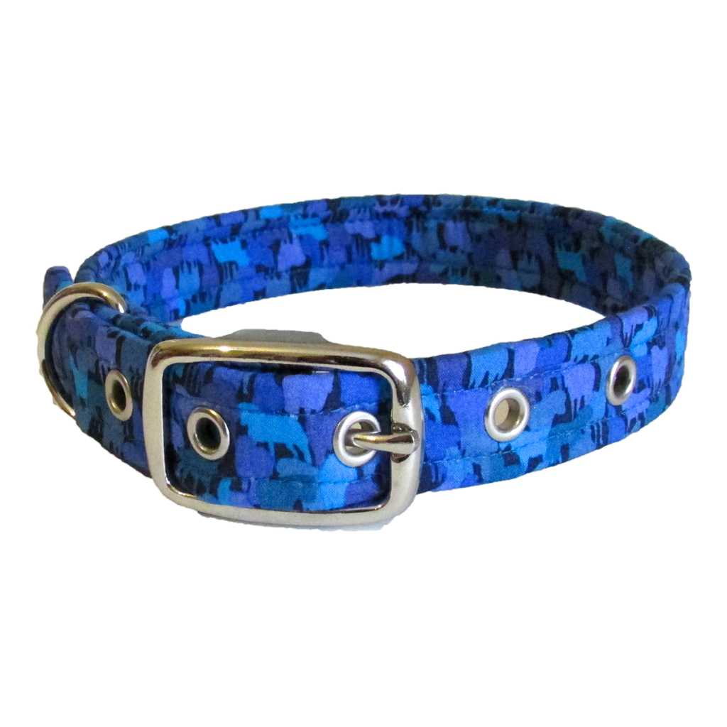Brightly Coloured Dog Collars