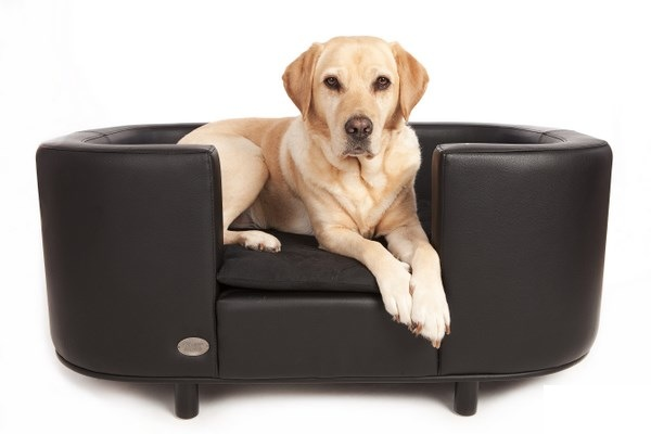 Hampton Luxury Leather Black Dog Bed by Chester and Wells