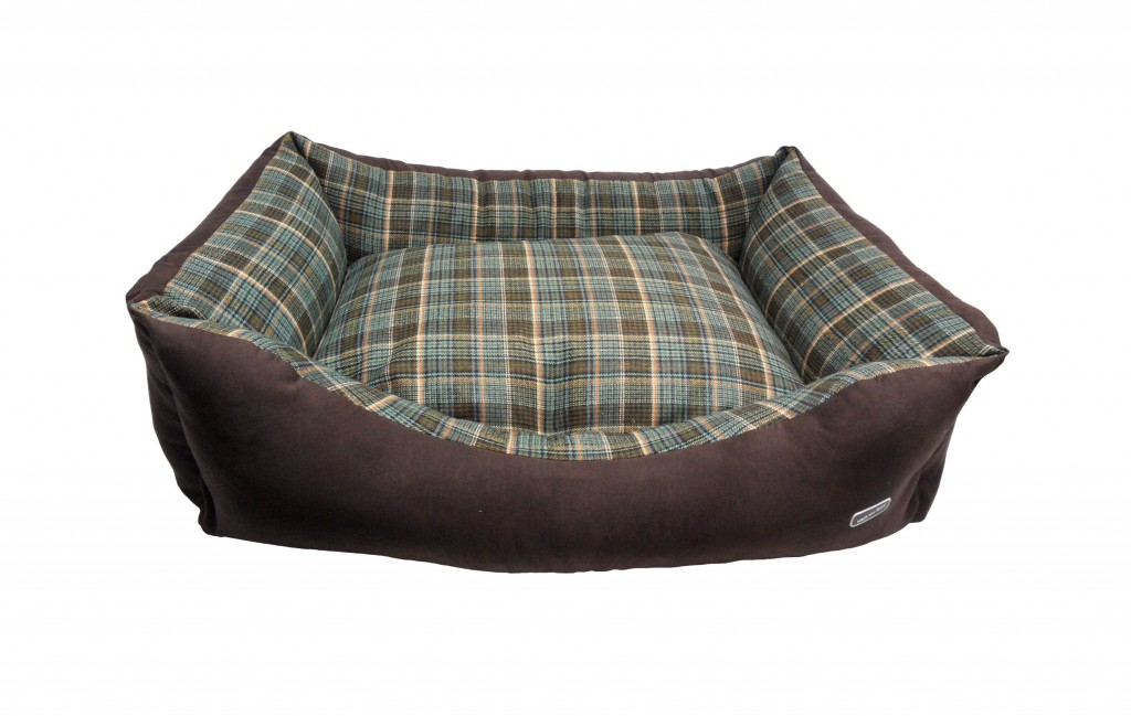 Best Beds For Greyhounds