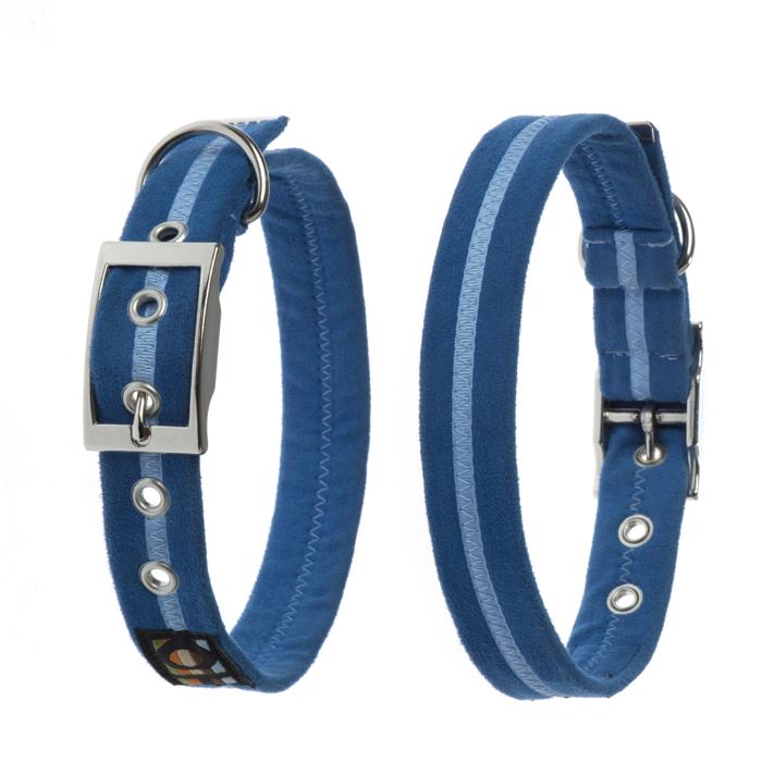 Oscar and Hooch Signature Dog Collar Royal Blue