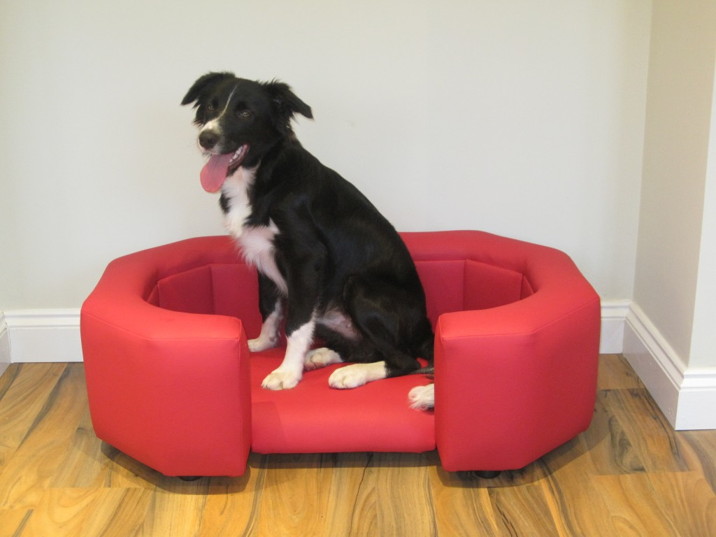 The Oscar Luxury Leather Dog Bed